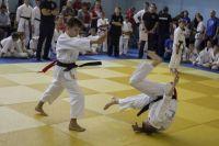 Tomiki Aikido Championship 2014 16